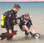 DiversGearingUp220