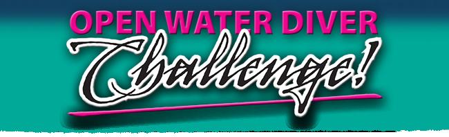 OWD Challenge 650 header