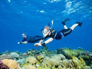 scuba skills update2